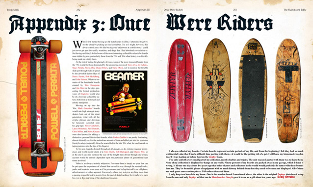 Samples pages from The Disposable Skateboard Bible preview 2