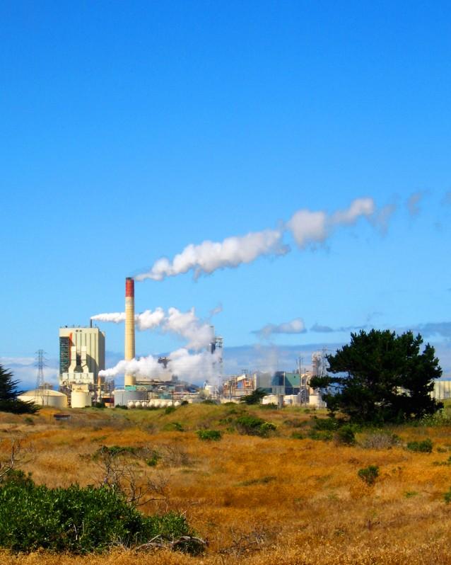 Papermill – Eureka, California