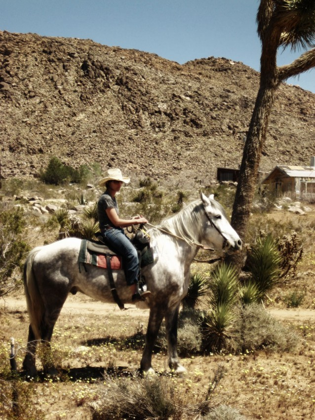 Michelle on a the very noble grey horse