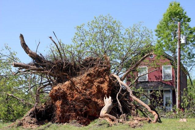 southeastern-storm-season.jpg
